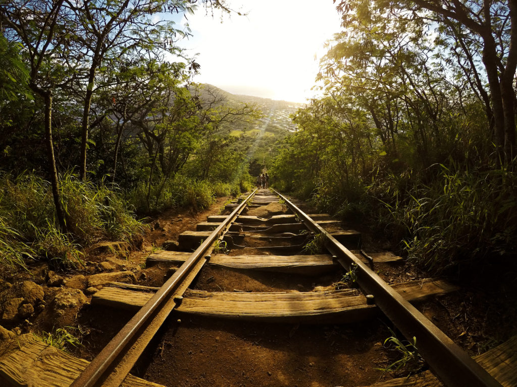 Hawaii trail rail